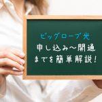【ビッグローブ光】申し込みから利用開始までの流れを簡単解説!